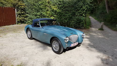 Austin Healey 100/4 BN1 (1953) For Sale (picture 1 of 6)