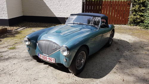 Austin Healey 100/4 BN1 (1953) For Sale (picture 2 of 6)