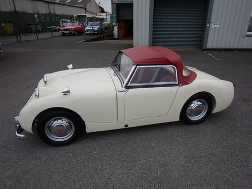 1961 AUSTIN HEALEY Frogeye Mk1 Sprite ~  SOLD (picture 1 of 6)