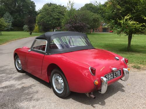 1959 Austin Healey 'Frogeye' Sprite  for Sale in Hampshire.. SOLD (picture 2 of 6)