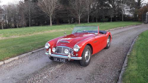 Austin Healey 100/6 BN4 1957 SOLD (picture 1 of 6)