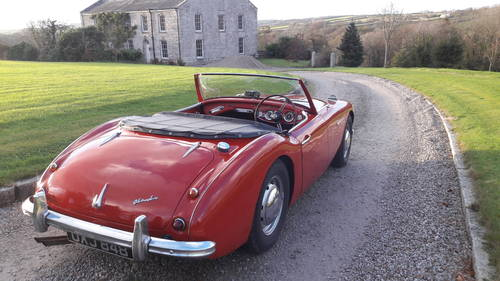 Austin Healey 100/6 BN4 1957 SOLD (picture 3 of 6)