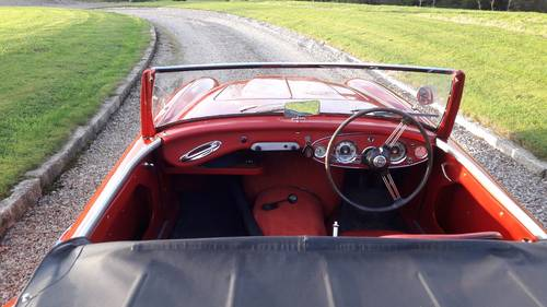 Austin Healey 100/6 BN4 1957 SOLD (picture 4 of 6)