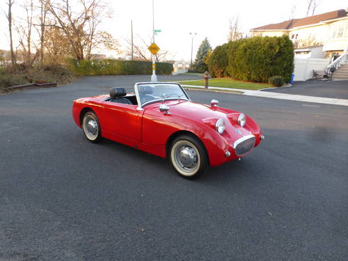 1959 Austin Healey Bugeye 1275 Good Driver - SOLD (picture 1 of 6)