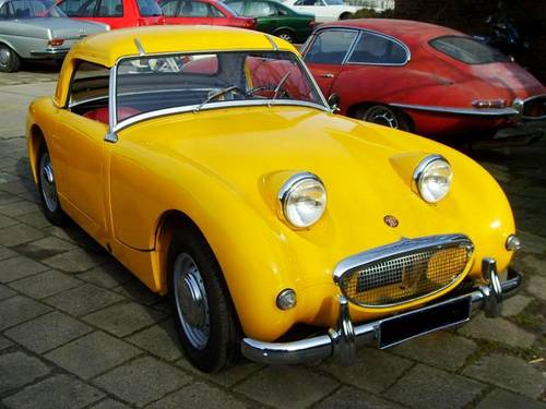 austin healey frogeye For Sale (picture 1 of 6)