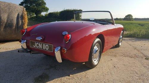 1958 Austin Healey Frogeye Sprite Mk1. Cherry Red.  RHD SOLD (picture 2 of 6)