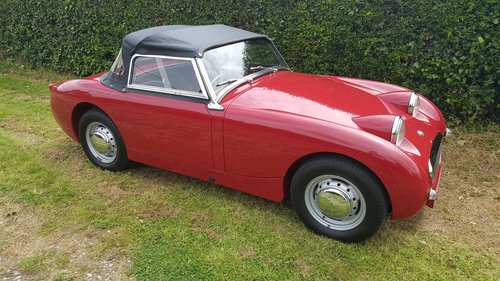1958 Austin Healey Frogeye Sprite Mk1. Cherry Red.  RHD SOLD (picture 3 of 6)