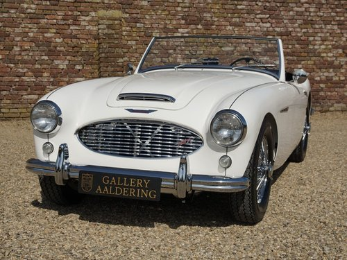 1959 Austin Healey 100/6 BN4  fully restored! For Sale (picture 4 of 6)