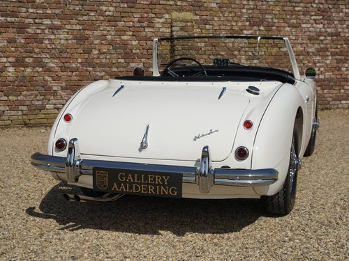 1959 Austin Healey 100/6 BN4  fully restored! For Sale (picture 5 of 6)