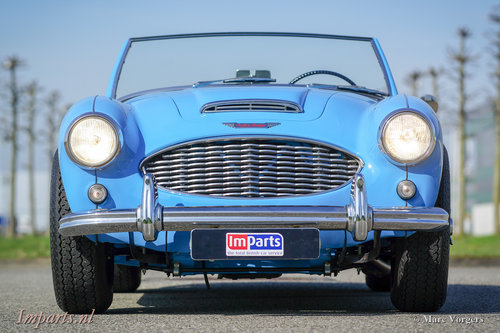 1960 Austin Healey 3000 Mk1 LHD For Sale (picture 6 of 6)