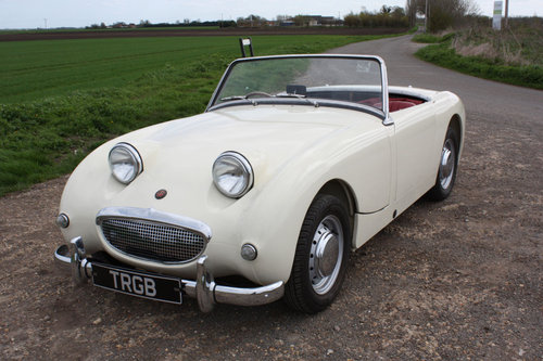1960 OUTSTANDING AUSTIN HEALEY SPRITE SOLD (picture 1 of 6)