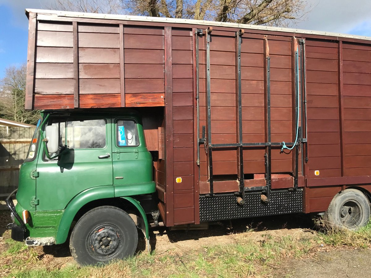 1972 Bedford TK Horsebox For Sale (picture 1 of 3)