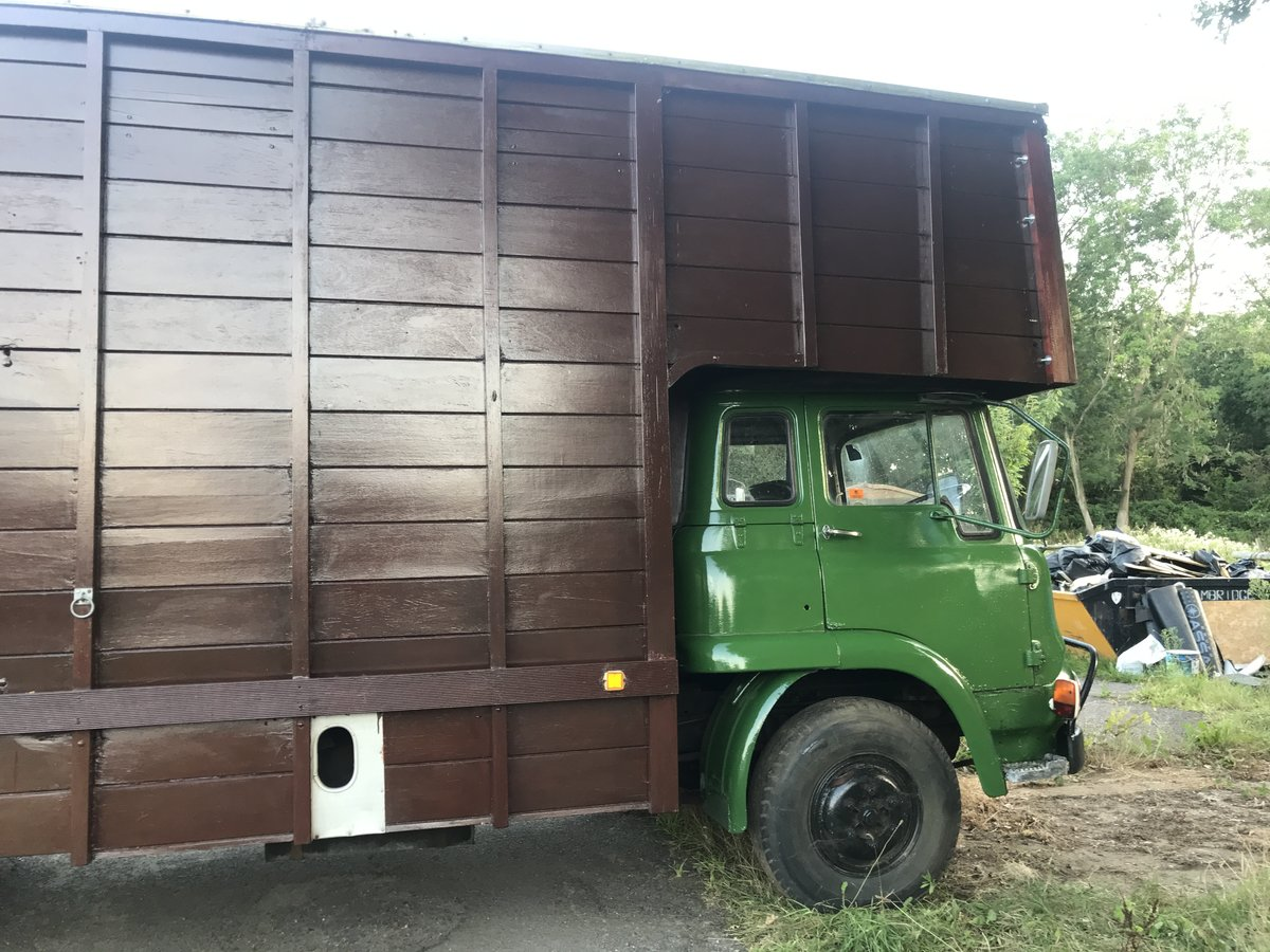 1972 Bedford TK Horsebox For Sale (picture 2 of 5)
