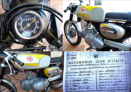 1969 MotoBi 250 Sport Special For Sale (picture 5 of 6)