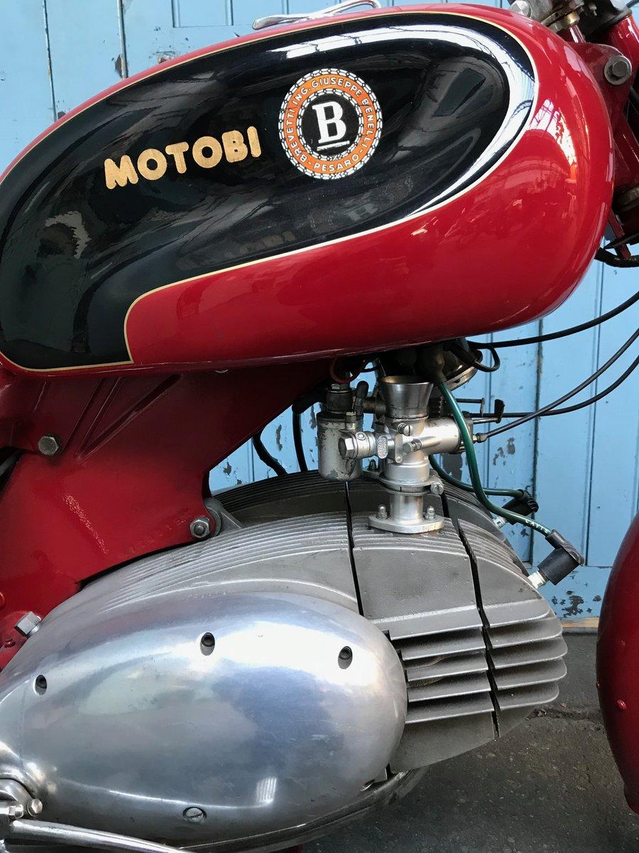 1955 Benelli MOTOBI Spring Lasting 200.  For Sale (picture 6 of 6)