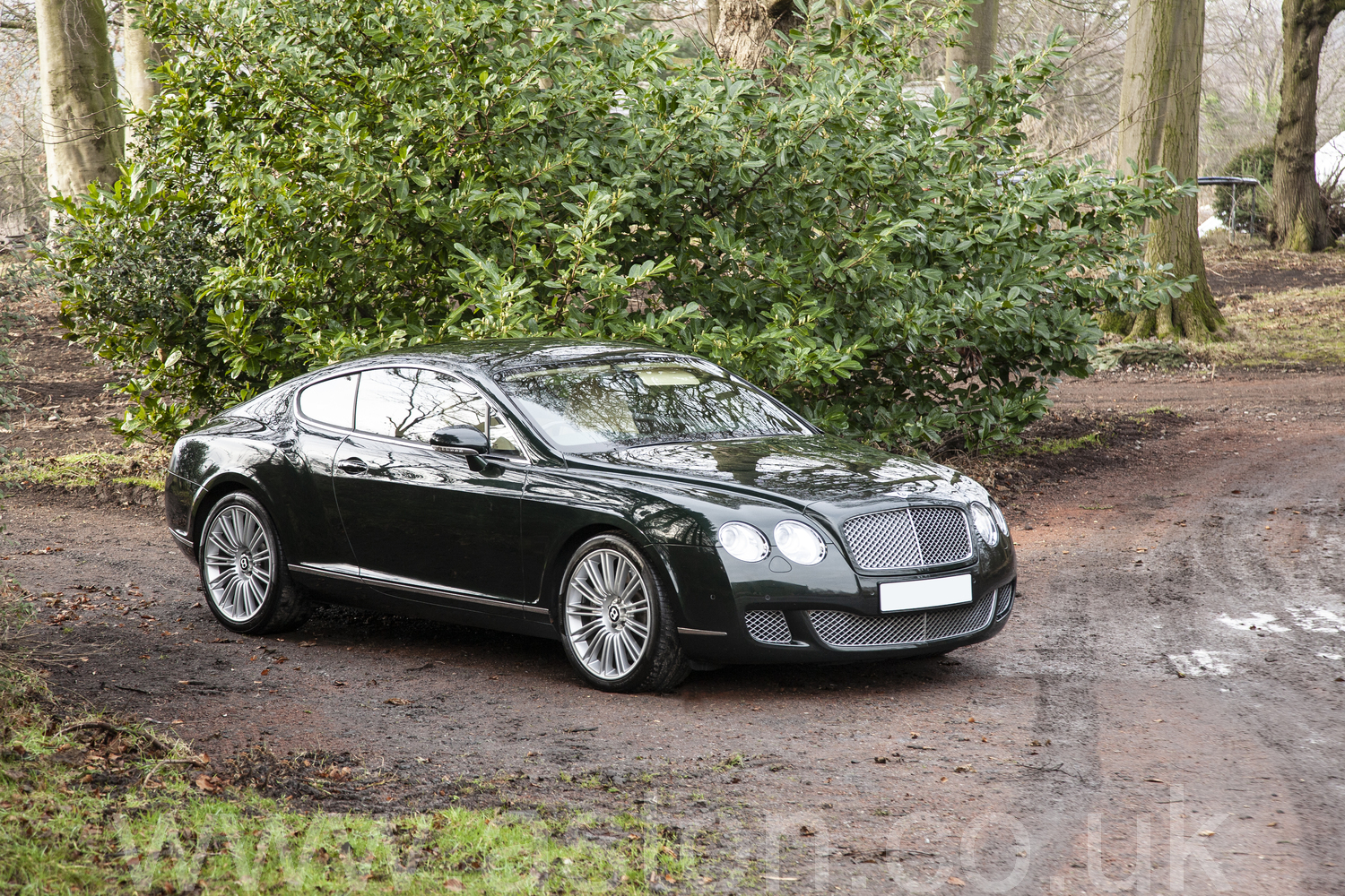 2008 Bentley GT Continental Speed W12 SOLD (picture 6 of 6)