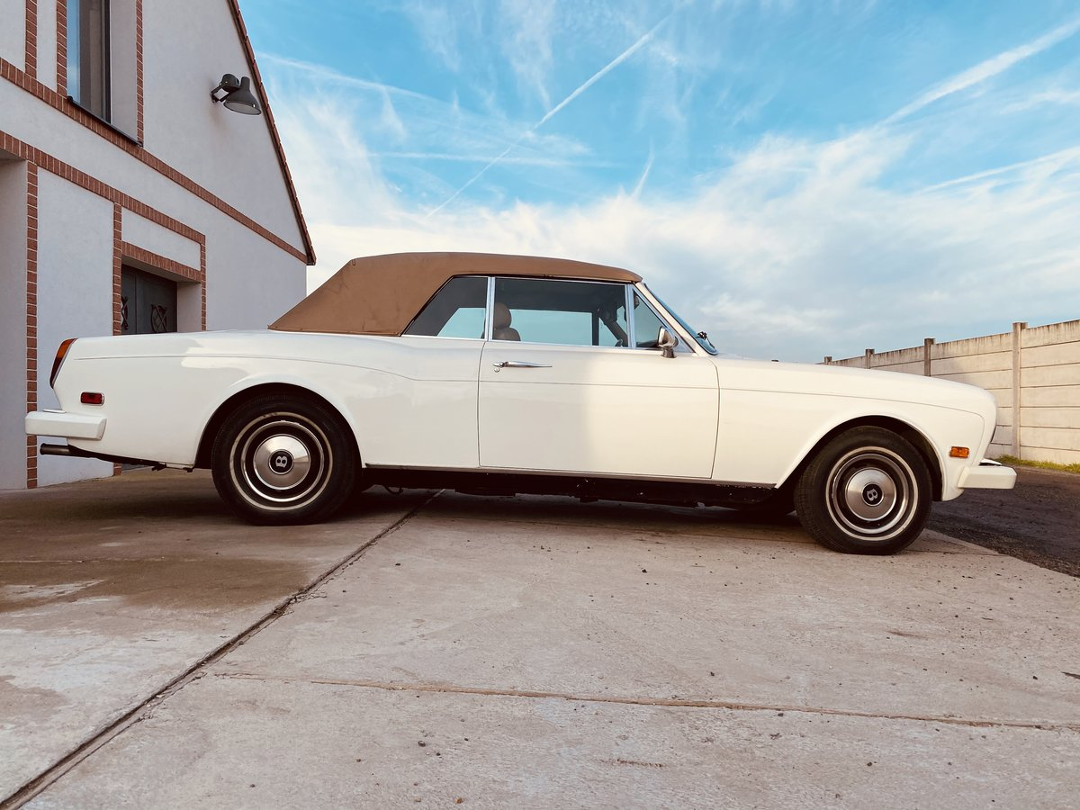 1979 Bentley Corniche / Continental Drophead For Sale (picture 2 of 6)