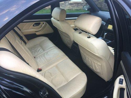 2002 E39 BMW 530i Sport Auto Champagne Edition  For Sale (picture 5 of 6)