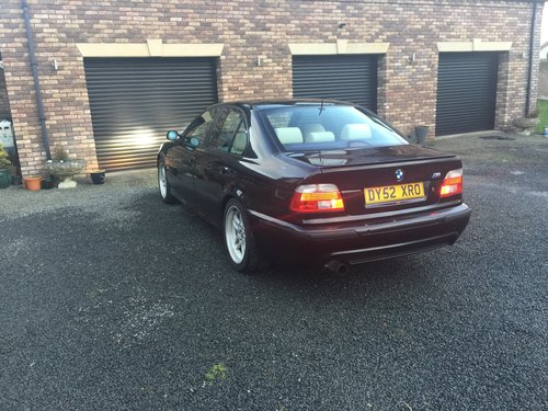 2002 E39 BMW 530i Sport Auto Champagne Edition  For Sale (picture 6 of 6)