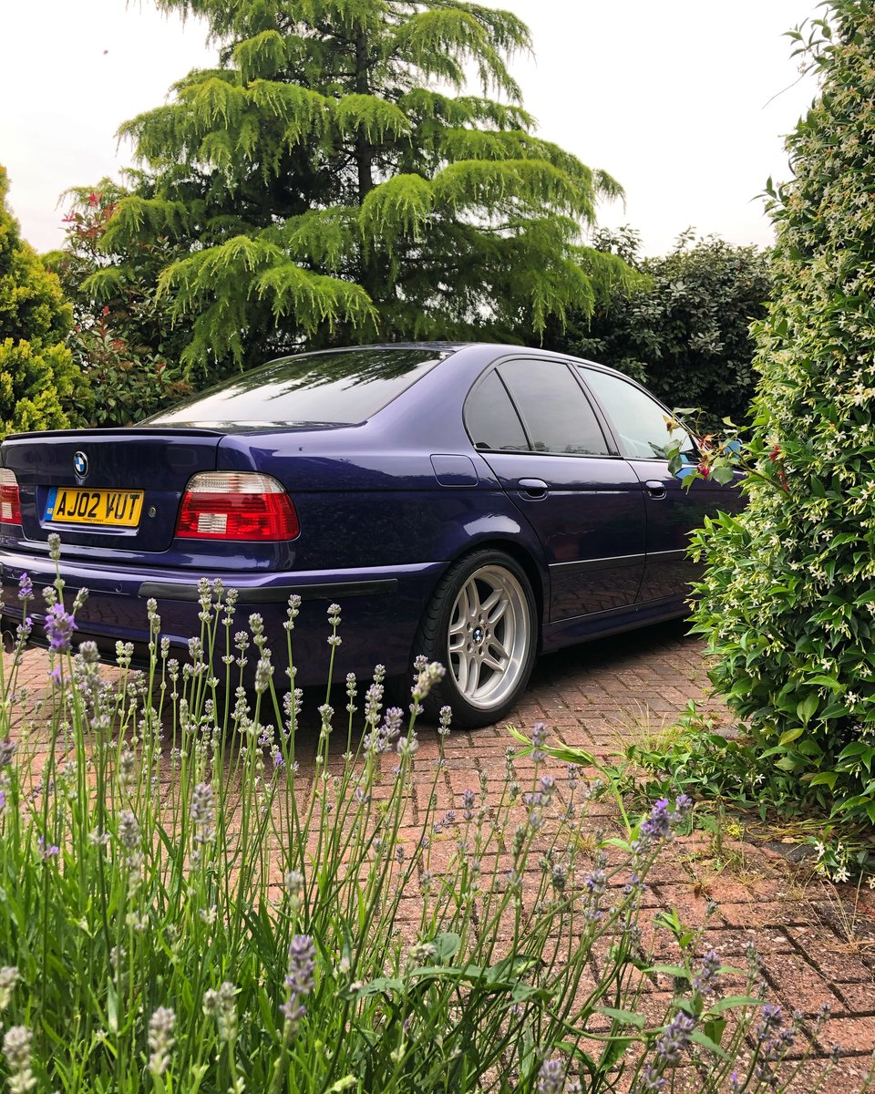 2002 BMW E39 530i Sport Individual Velvet Blue SOLD (picture 1 of 1)