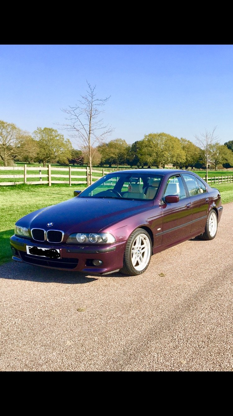 2002 BMW 530i individual sport For Sale (picture 2 of 6)