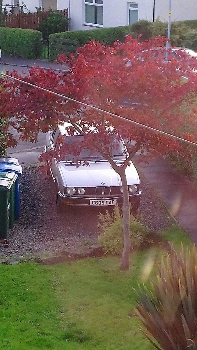 1985 BMW E28 525E For Sale (picture 6 of 6)