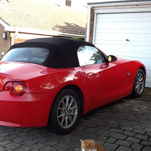 BMW Z4 Roadster (Red)