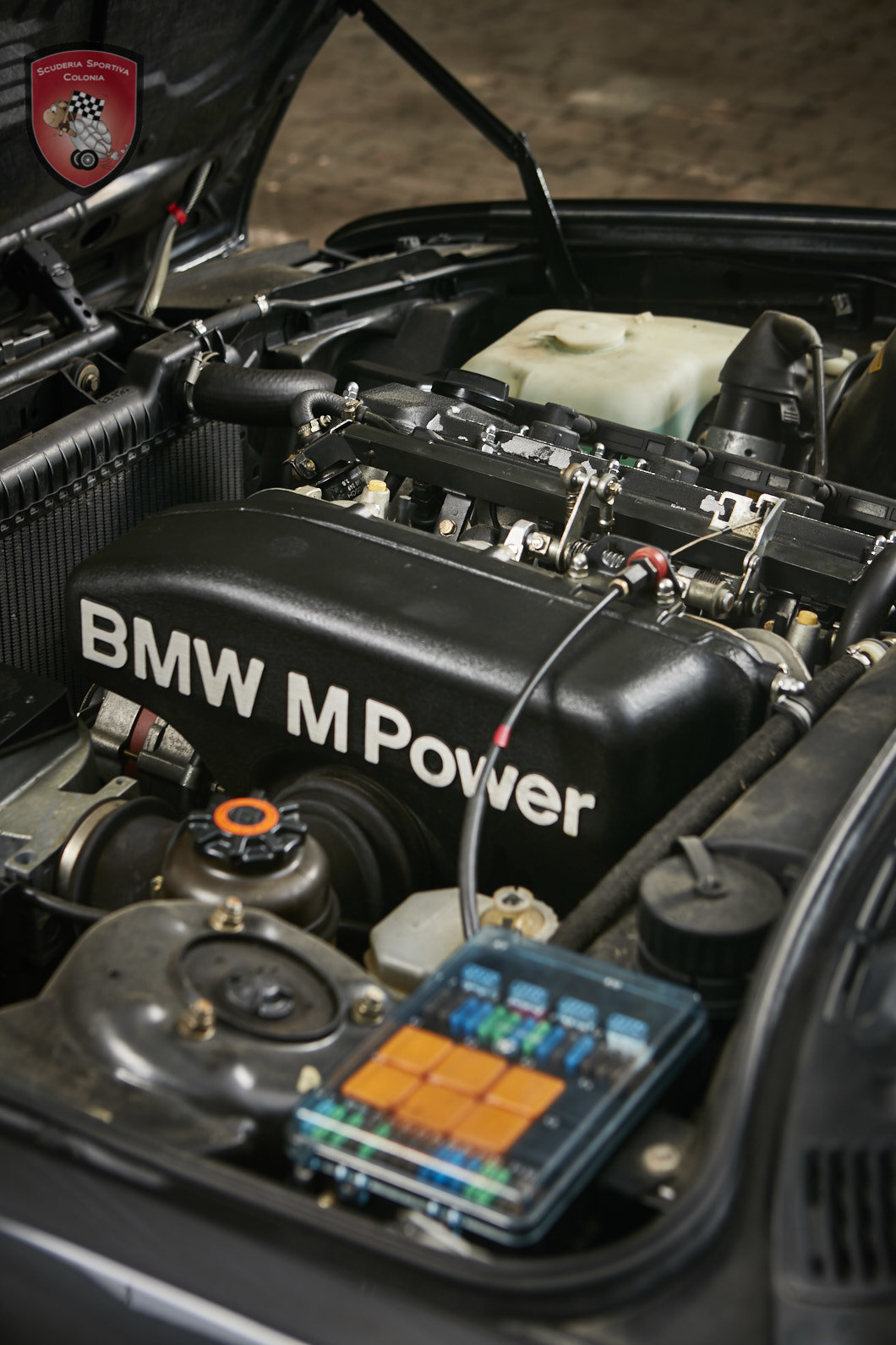 1992 Preserved BMW M3 cabriolet For Sale (picture 12 of 12)