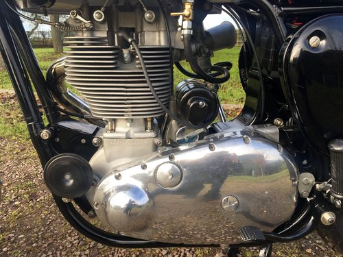 BSA DBD34 Touring Gold Star Rep 500cc 1956 SOLD (picture 4 of 6)