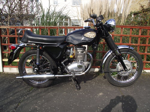 1969 BSA STARFIRE SOLD (picture 1 of 2)