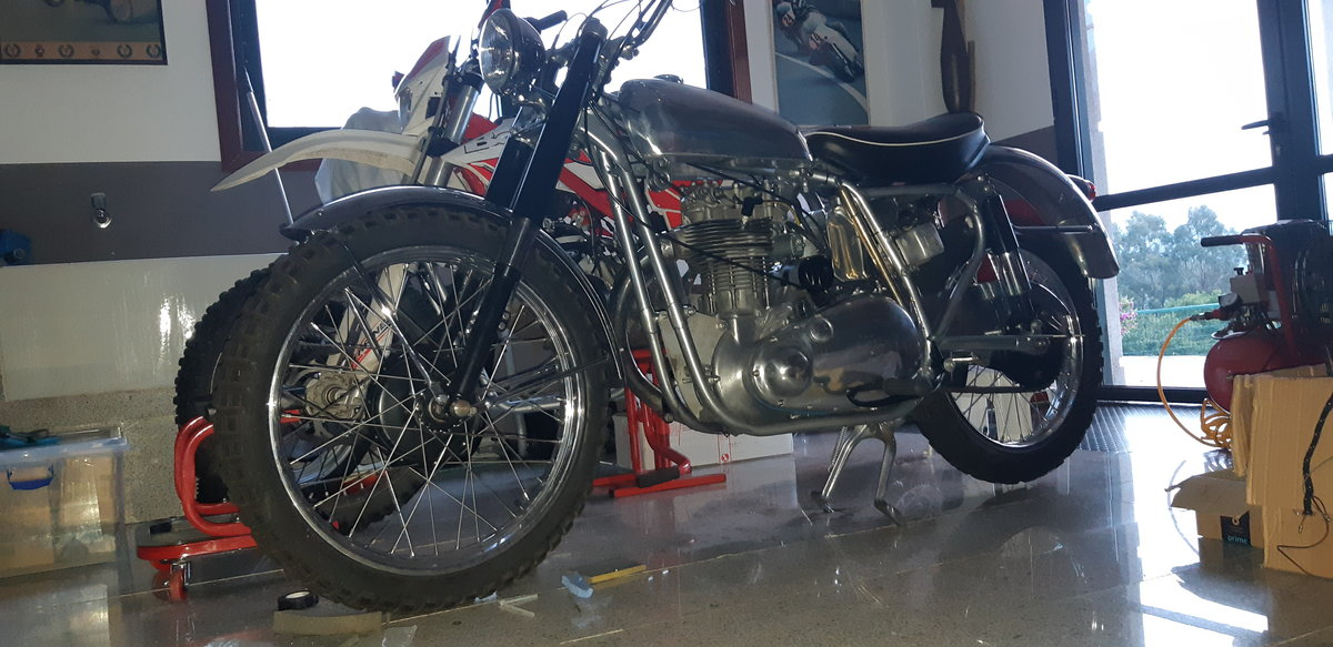 1954 BSA GOLD STAR SCRAMBLER For Sale (picture 6 of 6)