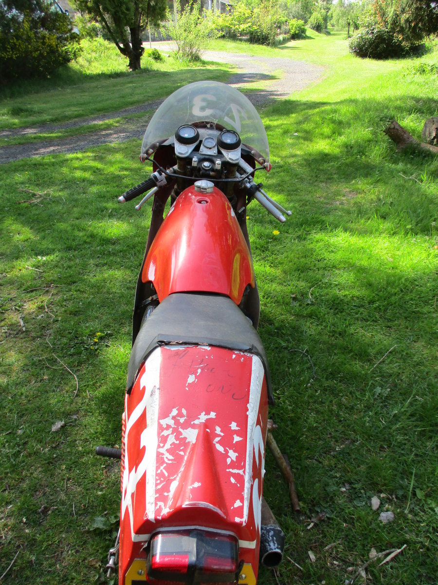 1969 BSA C15 in Racing Trim. Period racer.Barn Find For Sale (picture 6 of 6)