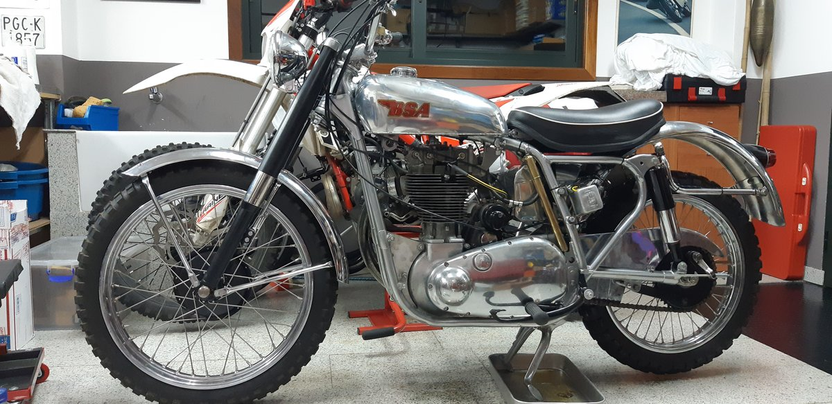 1954 BSA GOLD STAR SCRAMBLER For Sale (picture 1 of 6)