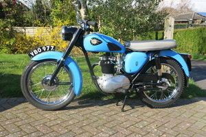 Beautiful BSA C15 250cc 1960 For Sale