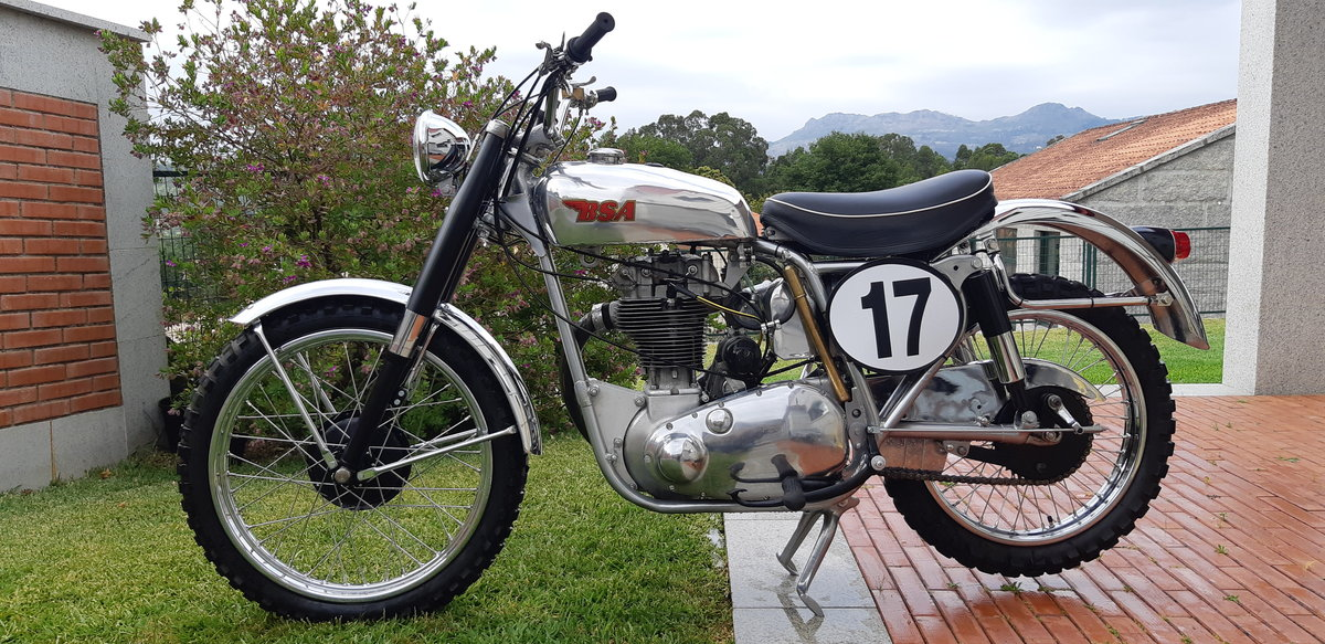 1954 BSA GOLD STAR SCRAMBLER For Sale (picture 2 of 6)