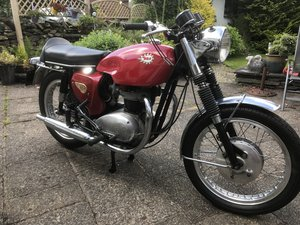 1966 BSA Spitfire For Sale