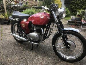 1966 BSA Spitfire