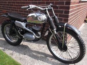 1964 BSA Bantan Trials Motorcyle