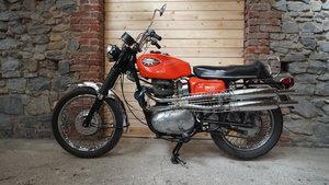 1969 BSA Firebird scrambler  For Sale
