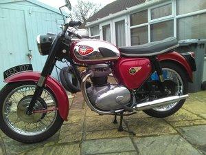 1962 BSA  A65