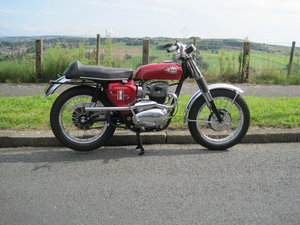 1967 BSA Hornet 650, Show Winning Bike-Outstanding