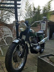 bsa scrambler 250 cc