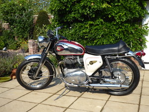 Superb BSA A65 Lightning Fully Restored