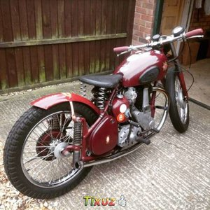 Picture of 1953 Bsa b31 in stripped down style