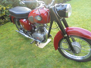 bsa c15 250cc stunning condition