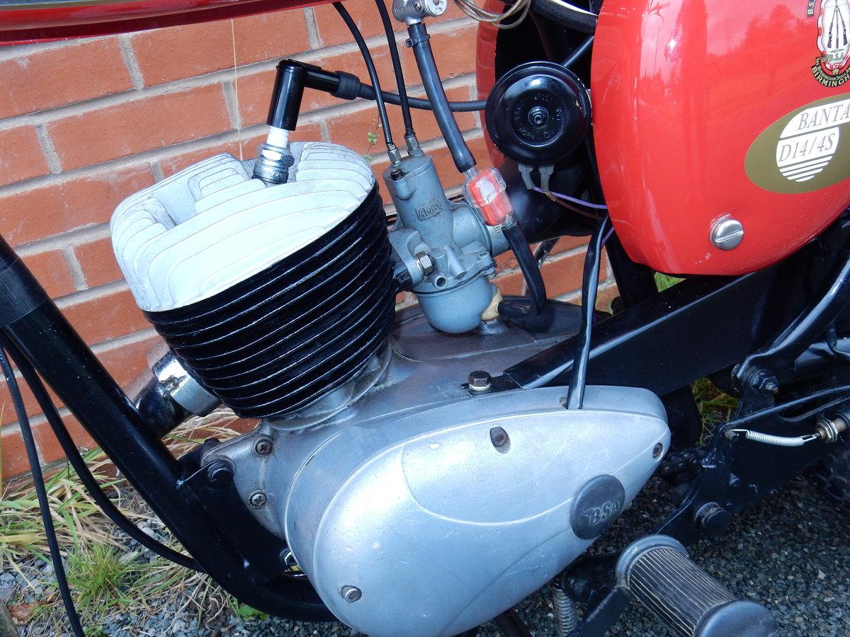 BSA Bantam D14B  Sport  175cc  1968 For Sale (picture 12 of 12)