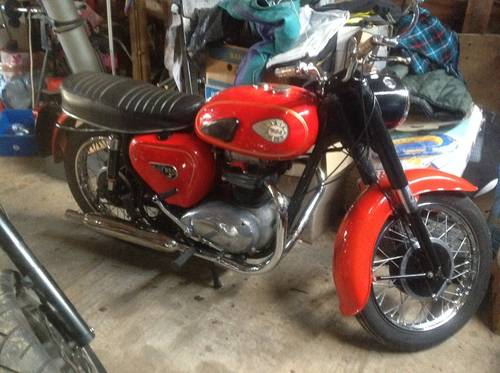 BSA A65 650cc 1964 For Sale (picture 1 of 6)
