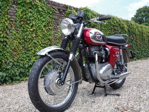 1965 BSA A65 Lightning Fully restored and rebuilt!! For Sale (picture 2 of 6)