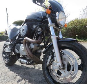 2000 Buell cyclone black bomber. Low miles 1203cc
