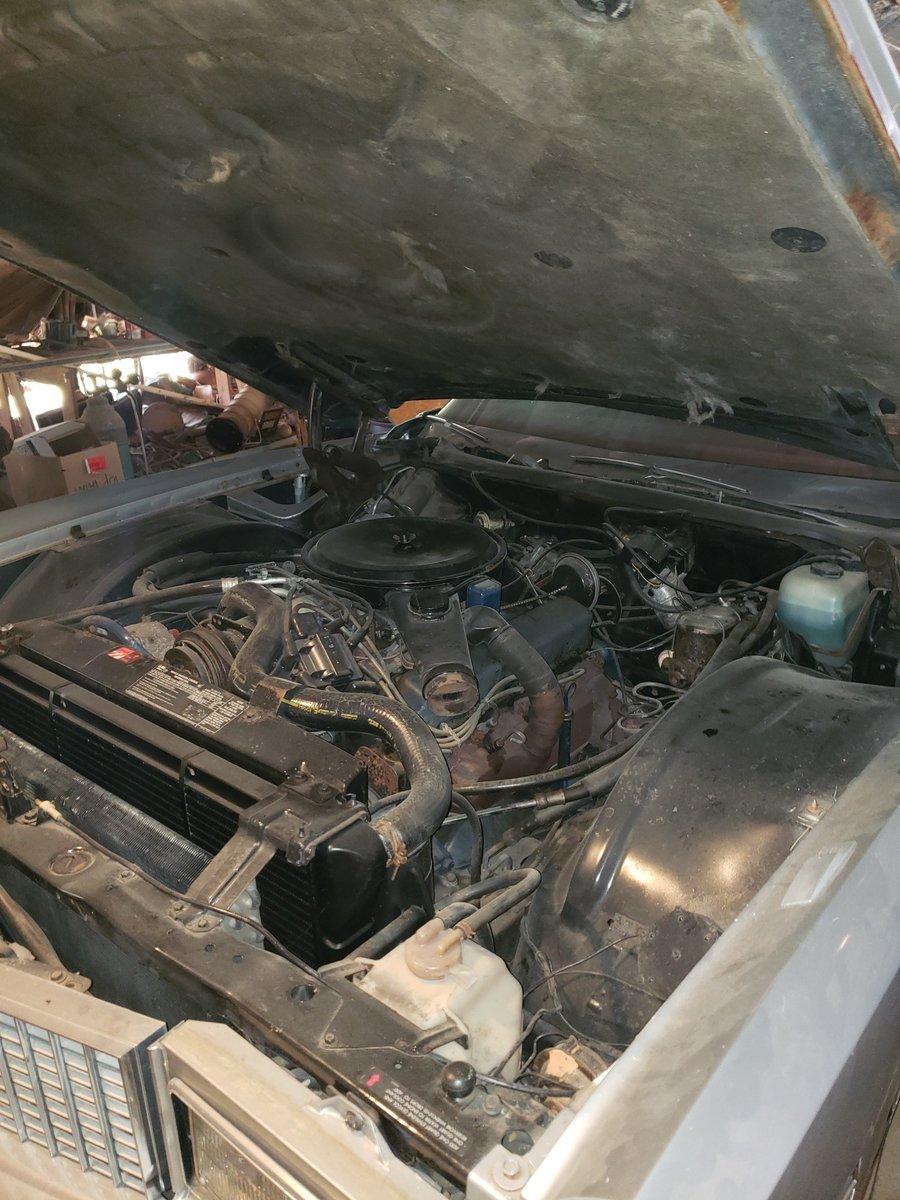 1976 Cadillac Eldorado Convertible (Henderson, NC) For Sale (picture 5 of 6)